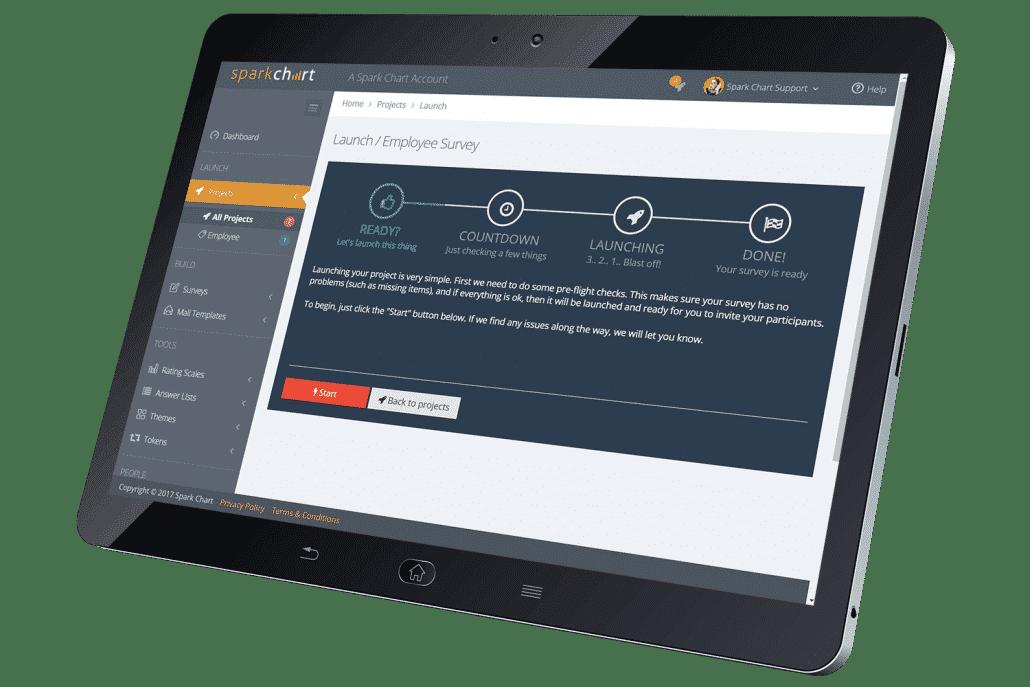 Spark Chart Survey Consultants Project Launch
