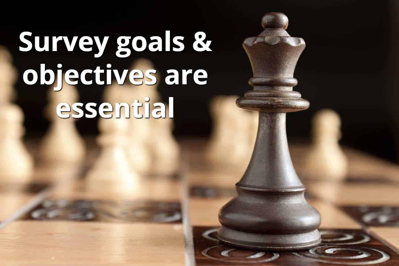 Survey Goals & Objectives