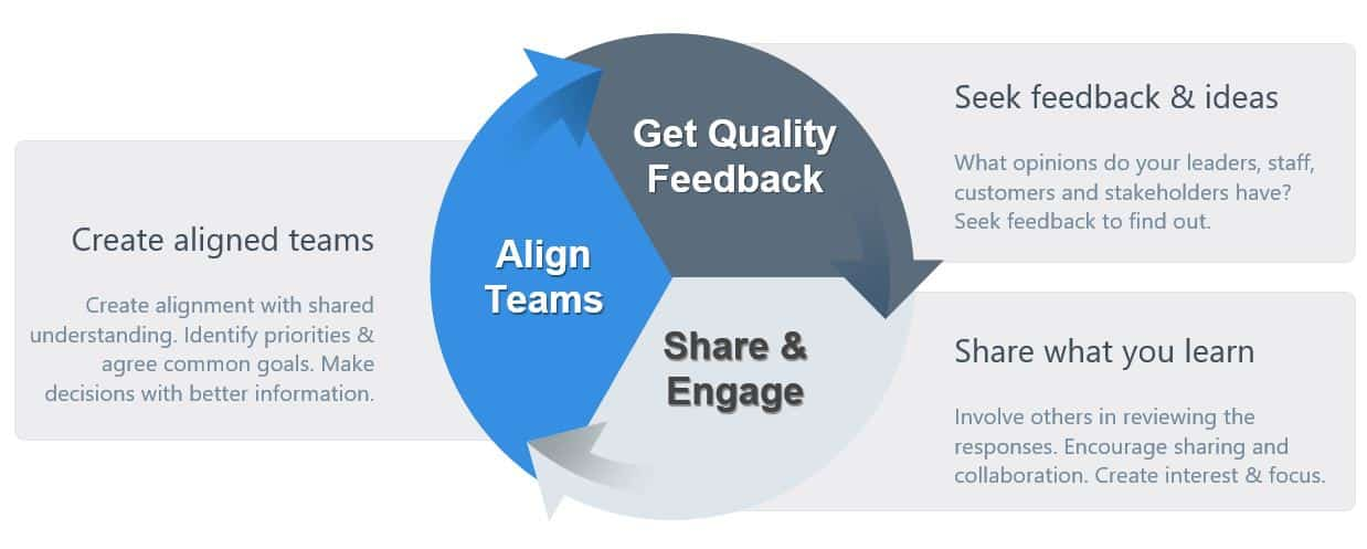 Feedback Engagement Process